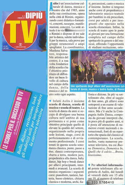 dipiuTV _2011
